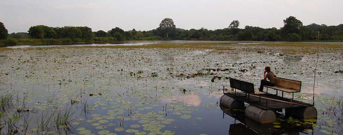 proyectos de eurofinsa en sri lanka
