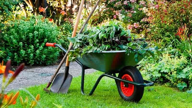 Herramientas esenciales para iniciarse en la jardinería