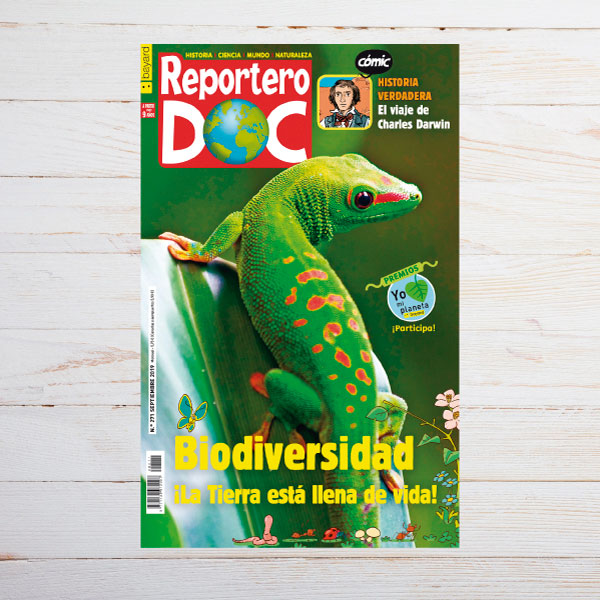 Las revistas de Bayard Editorial en las aulas.